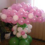 Из 15 цветов 1100 руб.